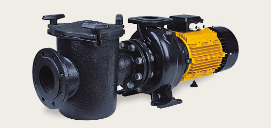 Centrifugal pool pumps 5500 W