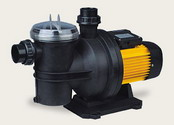 Single-stage centrifugal pool pump 550 W 3/4 HP